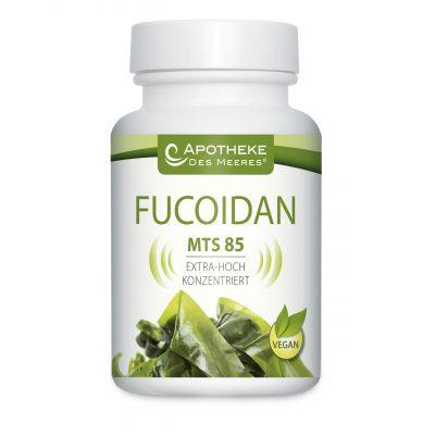 Fucoidan MTS 85 Nahrungsergänzung